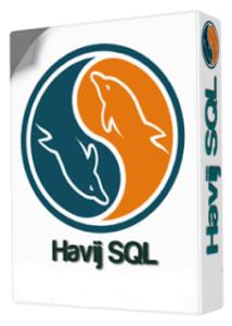 ITSecTeam Havij Pro 1.17 Crack + Registration Keygen
